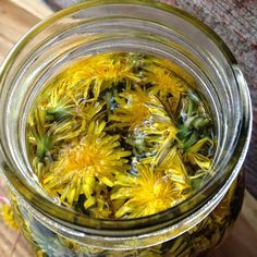 Dandelion Vinegar is super easy to make and very affordable! Dandelion has health benefits from weight loss to reducing high blood pressure. Preserves, Vinegar, Dandelion, Cabbage, The Cure, Curry, Herbs, Vegetables, Cooking