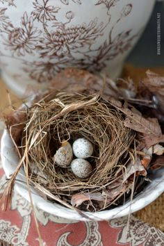 Brown Transferware with bird nest | homeiswheretheboatis.net #fall #table #pottingshed