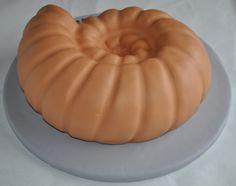 ammonite fossil cake