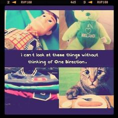 Never will I look at Toy Story, Ireland, carrots, varsity jackets, or cats without thinking of 1D again❤