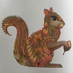 Johanna Basford | Colouring Gallery Coloring Book Art, Colouring Pages, Adult Coloring Pages, Enchanted Forest Book, Enchanted Forest Coloring Book, Johanna Basford Coloring Book, Squirrel, Drawings, Anti Stress