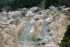 "Where: Japan From afar, the tree-lined ""Touge"" (or ""Pass"") roads that ascend to the caldera of Mount Fuji may look meditative. But these twisting passes are the birthplace of drifting, the automotive passion of choice for foolhardy youths in heavily modified rear-wheel-drive cars. Though we don't recommend terrorizing these twisties late at night like those pioneers did back in the day, there's nothing wrong with fantasizing about the illicit vehicular mayhem that inspired the motorsports…"