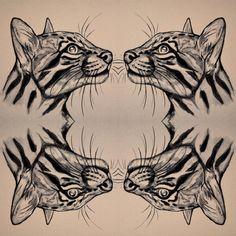 ✨ #ocelot #wildcats #drawing #art #piirustus #luonnos #sketchtattoo #sketches #sketching #tatuointi #essitattoo #sketch #sketchbook #animaldrawing #illustration #tattoodesign #tattooart #tattoosketch #animals #wildlifeart #animaldrawing #illustrator #tattooartist #wildlifeartist #flashaddicted #femaletattooist #artistsoninstagram