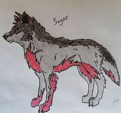 I adopted this guy! Sagar! Design by @elizabetht0320 Drawing by @chickidee131440