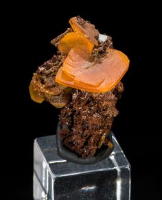 Acrylic Display, Rocks And Gems, Gems And Minerals, Chihuahua, Mexico, Fossils, Science, Earth, Gemstones