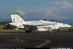 McDonnell Douglas F/A-18B Hornet aircraft picture