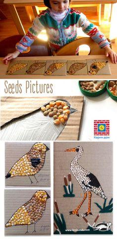 Seeds Pictures | krokotak | Bloglovin'