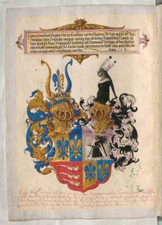 Wappen und Ahnenprobe Johann Jakob Fugger (1516-1575).