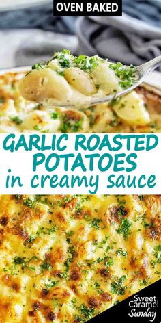 Creamy Garlic Potatoes are a side dish to serve with ANYTHING! With garlic, herbs and cheese this creamy potato recipe is an easy way to roast potatoes! Creamy Potato Recipe, Potato Recipes, Garlic Roasted Potatoes, Baked Garlic, Potato Sides, Potato Side Dishes, Main Dishes, Potatoes In Oven, Baked Potatoes