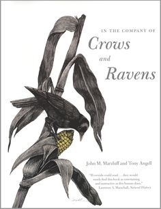 In The Company of Crows and Ravens. 4 / 5 Stars.  Enlightening.  You will look at these birds differently.
