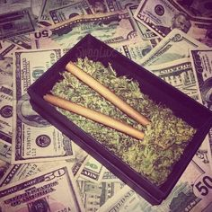 Buy Marijuana Online I Buy Weed online I Buy Cannabis online I Edibles Puff And Pass, Mary J, Up In Smoke, Stoner Girl, Smoking Weed, Ganja, Medical Marijuana, Swagg, Trippy
