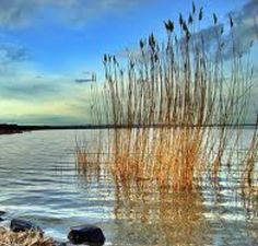 Lake Neusiedl or Ferto - Hungary - largest endorheic lake in central Europe
