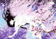 Resultado de imagem para jigoku shoujo imagens