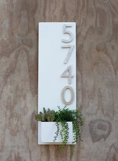 Wall Planter with Brushed Aluminum Address Numbers