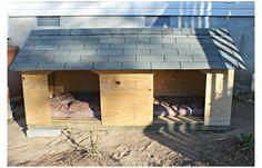 Double Dog House, Small Dog House, Large Dog House Plans, Dog House With Porch, Pallet Dog House, Build A Dog House, Big Dogs, Large Dogs, Outside Dogs