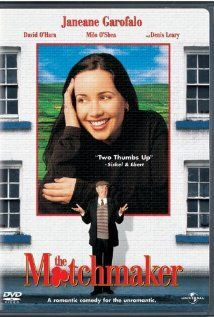 The cute and tiny Janeane Garofalo is just great in this hilarious romantic comedy. She plays the part of an American senator's PR officer whose job is to reconnect her boss with his supposedly Irish roots. As you can imagine, all sorts of tomfoolery and paddywackery emerge on her quest. There are some great shots of the west coast of Ireland, and plenty of earthy humour. Love it!