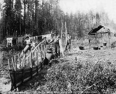 Building a Birch Bark Canoe at a Chippewa Camp (a).