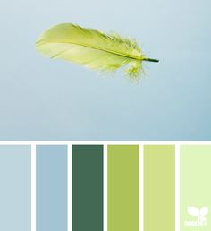 Feathered Hues - http://design-seeds.com/index.php/home/entry/feathered-hues11