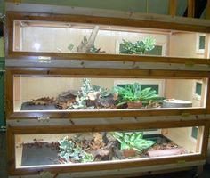 garter snake vivarium
