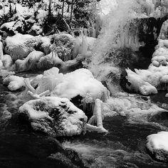 ... Don't mind cold water ... . . .  #jj_blackwhite #fiftyshades_of_nature#pocket_frozen #monochrome #snow_instagram #snow_lovers #sombreescapes #darknature #ig_shotz_bw#follow_the_grey_sky #sombrebw  #bnw #darkforest #woods#romantic_noir #blackandwhite #bnw_dark #pr0ject_bnw #bnw_captures #bnw_life #bnw_planet #bnw_one #bnw_switzerland#waterfall#wintertime #bienne #bnw_of_our_world #pocket_bnw#outdoor #ig_swisspictures taken and edited by Ka L-O-K