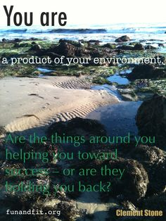 Motivational Quote: You are a product of your environment.... Clement Stone  Photo by KymberlyFunFit of funandfit.org #Blissearth @Alexandra Williams