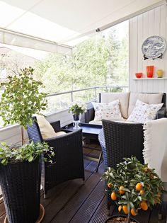 Ruusut ja mandariinipuu viihtyvät länsiparvekkeella markiisin suojaamina. Kesähuoneen kodikkuutta lisää paneloitu seinä ja tumma terassilaudoitus. Polyrottinkinen sohva on Askosta. Kiinalainen posliinivati on löytö alennusmyynnistä.