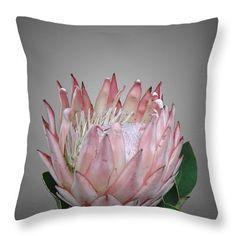 Protea flower cushion   #protea  #cushions #homeware #botanical  #decor #flowers