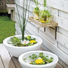 Mini - pond : do it yourself. Excellent 'water feature' for your garden or on your balcony. Flower Pots, Mini Garden, Indoor Water Garden, Garden Deco, Small Gardens, Patio Pond, Garden Styles, Outdoor Gardens, Garden