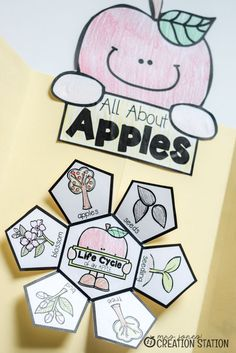 All About Apple Science Lapbook