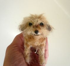 Needlefelted dog miniature