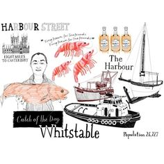 Zoe More OFerrall - Whitstable Illustration