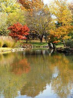 Japanese Gardens, Springfield, Missouri  @Lillymuse Trish Hawkins