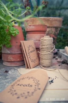 DYI seed packets: Dry out the Columbine seeds, make these as favors to a party. Such a sweet idea.