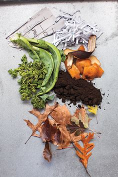 Great idea - the global language of vision is accepted around the world! --- Composting Basics, from Martha Stewart! - Green Living Ideas