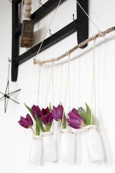 Blumenampel DIY mit Plastikflaschen Kordel und Ast, Blumen für die Wand, Makramee-Ampel DIY,