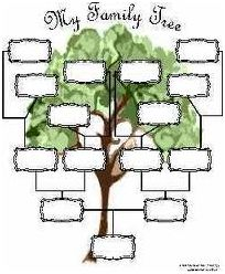 schema albero genealogico da