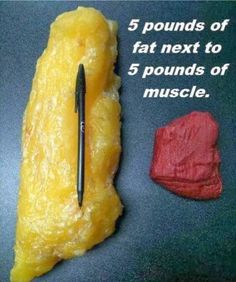 Fat vs Muscle. So crazy,I bet get off my butt and start running!