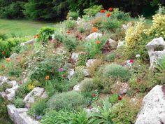 AuBergewohnlich Gestaltung Eines Natürlich Wirkenden Steingartens Steingarten Gestalten, Steingarten  Anlegen, Garten Am Hang, Garten