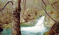 Nacedero del Urederra (Navarra) Cientos de cascadas y pozas cristalinas forman el río Urederra, que nace en un calizo de la sierra de Urbasa. Hayas, musgos y hiedras hipnotizan tanto como el agua esmeralda que se contempla en este rincón de Navarra.