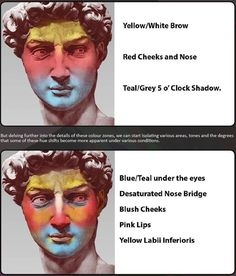Colour zones of the head — drawing and coloring tutorials