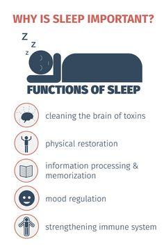 Waarom is slapen eigenlijk zo belangrijk? Lees het in deze infographic!