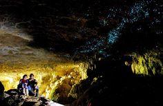 glowworm caves, waitomo, new zealand | Waitomo Glowworm Caves