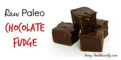 Raw Paleo Chocolate Fudge