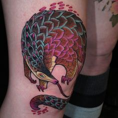 Babs is super tough and got this fun pangolin on her knee! Thanx Babs