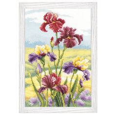 Irises at Dawn Counted Cross Stitch Kit