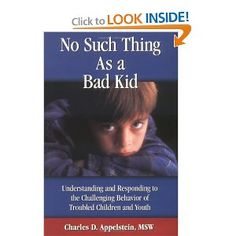 No Such Thing As a Bad Kid!: Understanding and Responding to the Challenging Behavior of Troubled Children and Youth