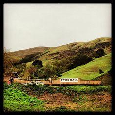 Horses and hills, Milpitas, California