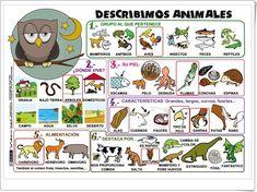 """Mural """"Describimos animales"""" (Actiludis.com)"""