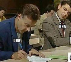 biology memes Looks like someone is copying youYou c. Biology Jokes, Funny Science Jokes, Science Puns, Chemistry Jokes, Nerd Jokes, Math Jokes, Nerd Humor, Funny Jokes, Hilarious