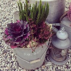 How to Plant Potted Flowers Outdoors in the Soil : Garden Space – Top Soop Outside Planters, Fall Planters, Garden Planters, Container Flowers, Container Plants, Container Gardening, Outdoor Plants, Outdoor Gardens, Fall Containers